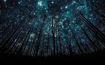 Νατάλια Κλιουτσάρεβα Αστέρια κι άνθρωποι
